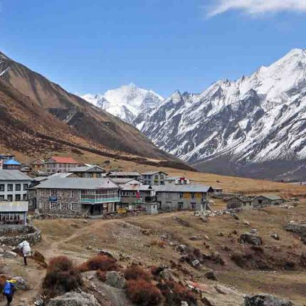 -Langtang-Valley-Trek-Package