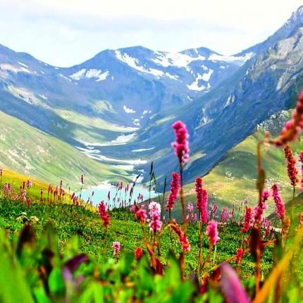 Himachal-Valley-of-Flowers-Trek