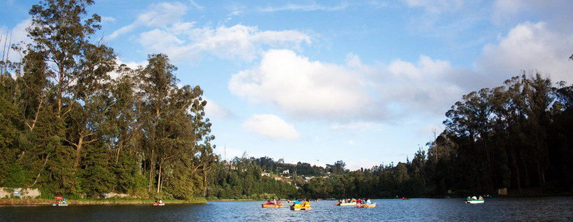 TripsInBudget – Ooty Tour Package Pic 2