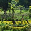 TripsInBudget – Ooty(Simspark) Tour Package Pic 1
